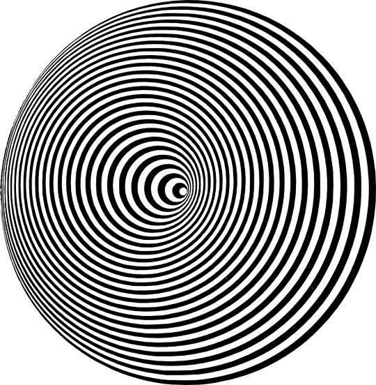 This optical illusion from Italian artist Marina Apollonio uses concentric circles to create a unique effect.