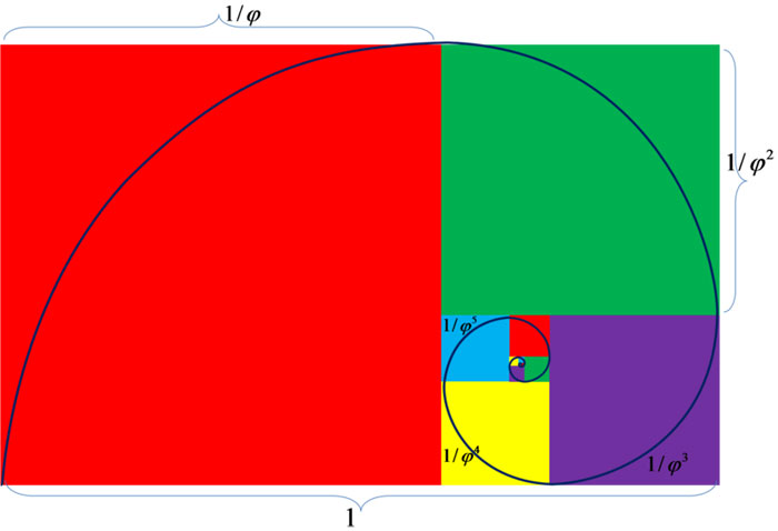 This picture shows a golden ratio spiral based on Fibonacci numbers ...
