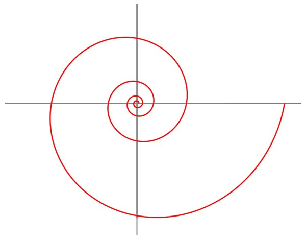 This picture features a logarithmic spiral, a unique spiral curve that is often seen in nature.
