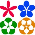 Mathematical Floral Patterns Picture