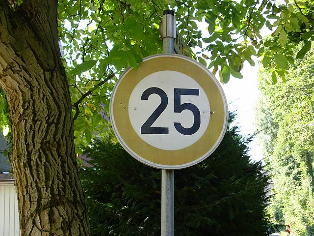 This photo shows the number 25 on a speed limit sign next to a tree.